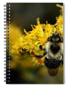 Heart Of The Bee Spiral Notebook
