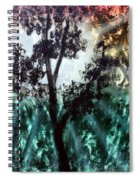 Heart Of The Rain Forest Spiral Notebook