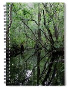 Heart Of The Swamp Spiral Notebook