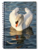 Heart Shaped Pride And Grace Spiral Notebook