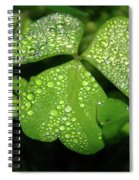 Heart Shaped With Water Drops Spiral Notebook