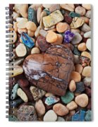 Heart Stone Among River Stones Spiral Notebook