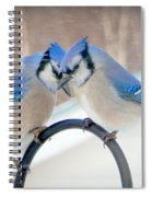 Heart To Heart Spiral Notebook