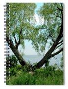 Heart Tree On Lake Saint Clair Spiral Notebook