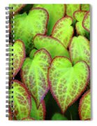 Hearts In Nature Spiral Notebook