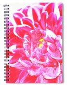 Heat Spiral Notebook