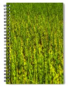 Heather Lake Grass 2 Spiral Notebook