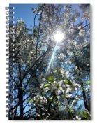 Heaven Sent Spring 2018 Spiral Notebook