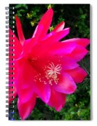 Heavenly Epiphyllum Orchid Cactus Spiral Notebook