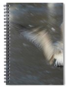 Heavenly Flight Spiral Notebook