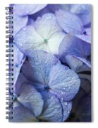 Heavenly Hydrangeas Spiral Notebook