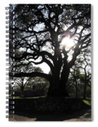 Heavenly Rest Spiral Notebook