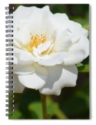 Heavenly White Rose Spiral Notebook