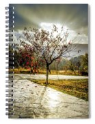 Heaven's Gate Spiral Notebook