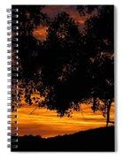 Heaven's Gold  Spiral Notebook