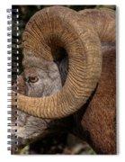 Heavy Horns Spiral Notebook
