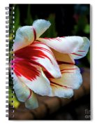 Heavy With Dew Spiral Notebook