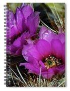 Hedgehog Morning Spiral Notebook