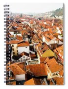Heidelberg Cityscape Spiral Notebook