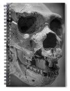 Heidelbergensis Spiral Notebook