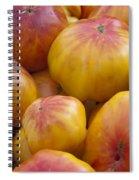 Heirloom Spiral Notebook