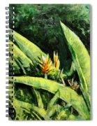 Heliconia Flowers 6 Spiral Notebook