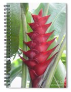 Heliconia Hot Flash Spiral Notebook