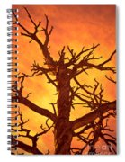 Hell Spiral Notebook