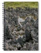 Hell - Grand Cayman Vertical Spiral Notebook