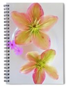 Hellebore Flower Art Spiral Notebook