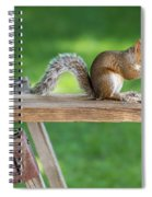 Hello Are You Gonna Eat All That? Chipmunk And Squirrel Spiral Notebook