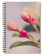 Hello Spring Spiral Notebook