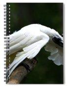 Hellooooo There Spiral Notebook