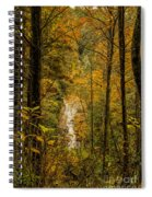 Helton Falls Through The Leaves Spiral Notebook