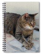 Hemingway Polydactyl Cat Spiral Notebook