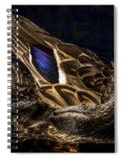 Hen Preening Spiral Notebook