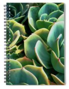 Hens And Chicks Spiral Notebook