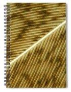 Hens Feather Spiral Notebook