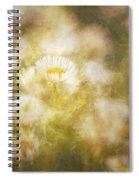 Her Beauty Alone Spiral Notebook