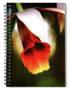 Her White Hat Spiral Notebook