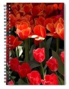 Heralds Of Spring Spiral Notebook