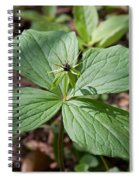 Herb Paris Spiral Notebook