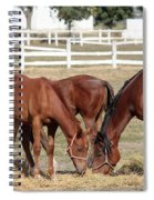 Herd Of Horses Ranch Scene Spiral Notebook