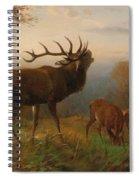 Herd Of Red Deer Spiral Notebook
