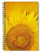 Here Comes The Sun Spiral Notebook