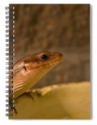 Here Spiral Notebook