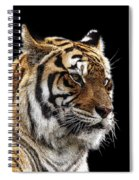Here Kitty... Spiral Notebook