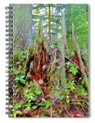 Here There Be Fairies Spiral Notebook