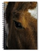Here's Looking At You Kid Spiral Notebook