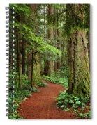 Heritage Forest 2 Spiral Notebook